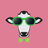 Vector images of a cow wearing glasses Stock Images
