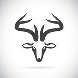 Vector images of deer head Stock Photo