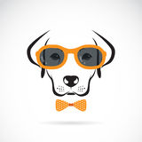 Vector images of dog labrador wearing sunglasses Royalty Free Stock Image