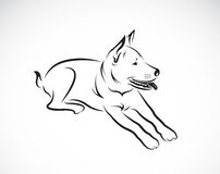 Vector images of dog. On a white background royalty free illustration