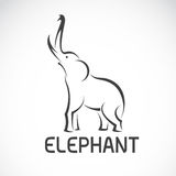 Vector images of elephant design Stock Photos