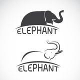 Vector images of elephant design. Stock Image