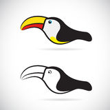 Vector images of hornbills Royalty Free Stock Photos
