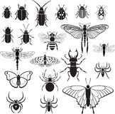 20 vector images of insects. 20 vector black images of insects on a white background Stock Photo