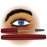 Makeup mascara Royalty Free Stock Photos