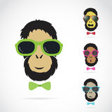 Vector images of orangutan wearing sunglasses. On white background Stock Photo