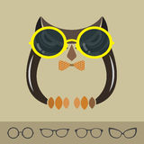 Vector images of owl and glasses Stock Photos