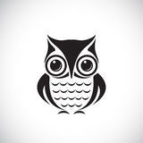 Vector images of owl. On a white background Stock Photos
