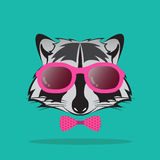 Vector images of raccoon and glasses Stock Photos