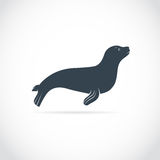 Vector images of sea lion. On a white background Stock Illustration