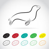 Vector images of sea lion. On a white background vector illustration