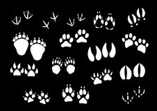 Vector imprint icons of animal or birds foot paws. Track imprints of wild animal paws or hooves and birds feet. Foot traces of dog or car pet, sparrow or dove Royalty Free Stock Photos
