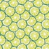 Vector inconsútil de la cal de la fruta de la fruta cítrica del modelo tropical verde del verano stock de ilustración