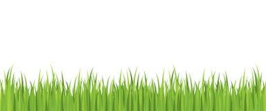 Vector inconsútil de la hierba del resorte Fotografía de archivo libre de regalías