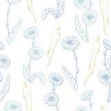 Vector inconsútil del ejemplo del bosquejo del fondo del modelo del color gráfico de la raíz de la planta de la flor de la achico Imagen de archivo libre de regalías