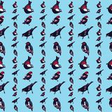 Vector inconsútil del modelo de los pájaros hermosos y coloridos fotografía de archivo libre de regalías