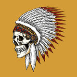 Vector indian skull Stock Photography