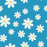 Vector infinite spring background with camomiles. Pattern of white camomiles. Layers grouped for easy editing illustration. For your design Vector Illustration