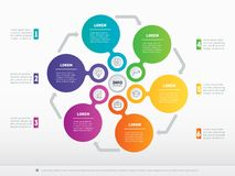 Vector infographic of technology or education process with 6 ste. Ps. Business presentation concept with 6 options. Web Template of a circle infochart, diagram Stock Photos