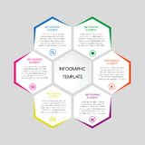 Vector infographic template with hexagons with text. For your business project royalty free illustration