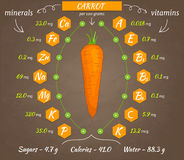 Vector infographics carrot Royalty Free Stock Photo