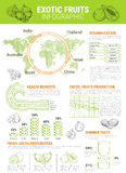 Vector infographics for exotic tropical fruits Royalty Free Stock Photography
