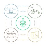 Vector infographics with linear illustration gardening circle colorful infographics concept for landscaping business. Vector landscape design process and royalty free illustration