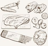 Vector ingredients products sketch set. Natural ingredients for cooking. set of vector sketches Royalty Free Stock Photos