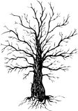Vector ink drawing tree Royalty Free Stock Images