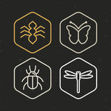 Vector insect icons in line style Stock Images