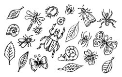 Free Vector Insects And Leaves Set, Outline Collection Of Bugs, Snails And Leaves Royalty Free Stock Photos - 190579358