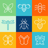 Vector insects and bugs Royalty Free Stock Photos