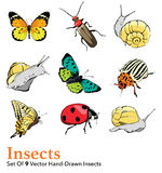 Vector Insects 9 Elements Set Seamless Pattern Royalty Free Stock Photos
