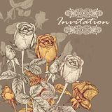 Vector invitation card with roses in vintage style for design Royalty Free Stock Images