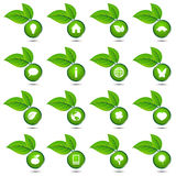 Vector inzameling van ecologische pictogrammen Stock Foto