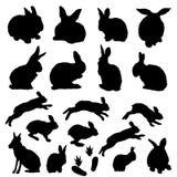 Vector inzameling van Pasen konijntjessilhouetten Stock Foto