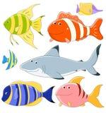 Vector inzameling van vissen Royalty-vrije Stock Foto