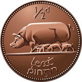 Vector Irish halfpenny coin money with pigs Royalty Free Stock Photography