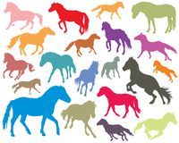 Set of colorful horses silhouettes-3. Vector isolated colorful standing, trotting and galloping horses Norwegian fjord pony silhouettes on white background Stock Photos