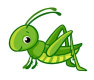 Free Vector Isolated Cute Green Grasshopper. Royalty Free Stock Images - 102099209