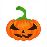 Vector isolated pumpkin Royalty Free Stock Image