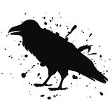 Vector isolated silhouette of a sitting raven, crow. Illustration of a bird, black on white, with ink splashes royalty free illustration