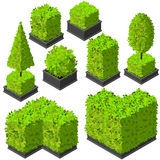 Vector isometric trees and decorative bushes stock image