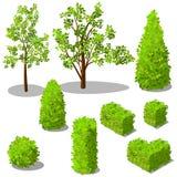 Vector isometrische bomen en decoratieve struiken stock illustratie