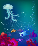 Vector jelly fish underwater world, sea shell. Vector jelly fish, shells, coral reefs air bubbles Royalty Free Stock Photography