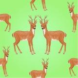 Vector joven de los ciervos de la textura inconsútil Imagenes de archivo