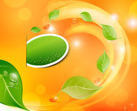Vector juicy, fresh background with leaves Stock Images