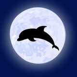 Vector of jumping dolphin on night sky with full moon on the background Royalty Free Stock Photos