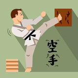 Vector Karate Fighter. Flat style colorful Cartoon illustration. Royalty Free Stock Photos