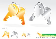Vector Keys Set Royalty Free Stock Photography